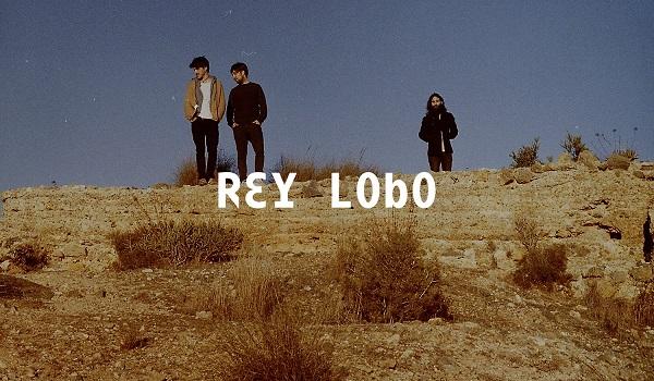 Rey Lobo Vida Festival